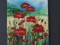 Another View of the Poppies.
